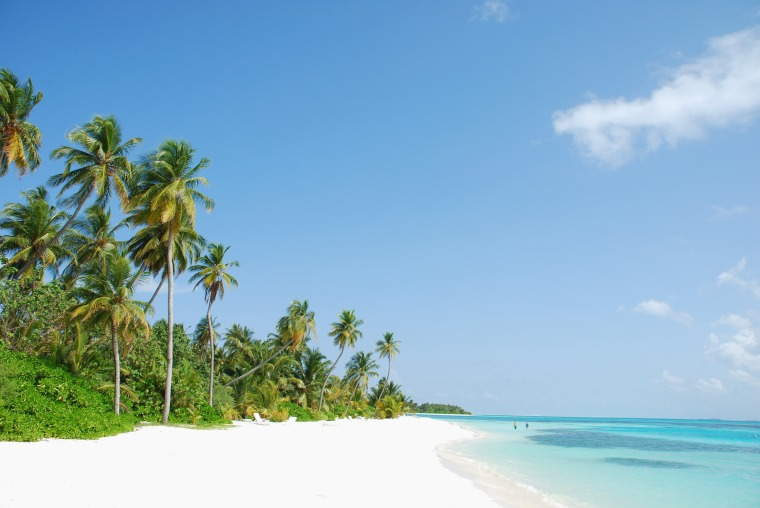 beautiful scene beach in a Maldivian Island