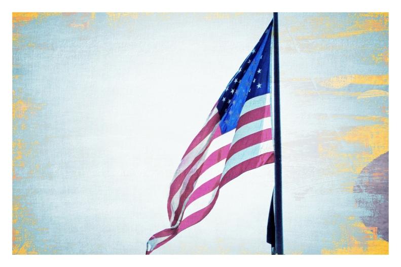 DC Trip Flag_edited-1