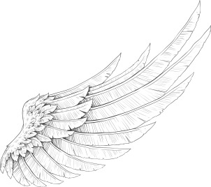wings-vector-element_G11agnL__L