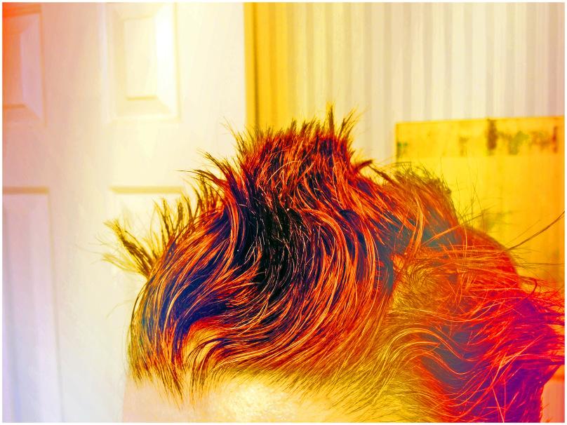 Wild Crazy Hair