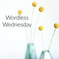 Wordless Wednesday*Dumaine Street New Orleans