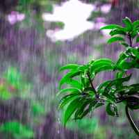 Why Rain & Clouds Are Stressful