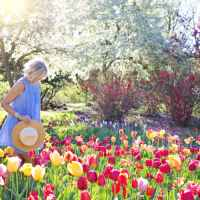 Spending Time In The Garden Boosts Mental Health